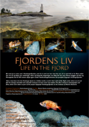 Filmplakat for Fjordens Liv